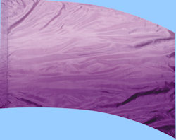 Shaded Poly China Silk F-1 Dewberry