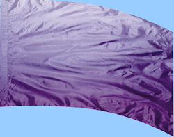 Shaded Poly China Silk F-1 Purple
